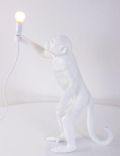 apen-lamp-staand-met-lichtbron