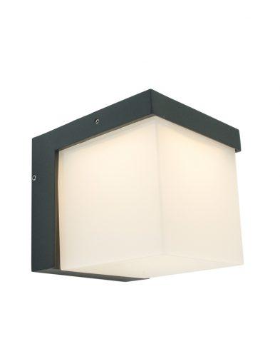 buiten-wandlamp-zwart