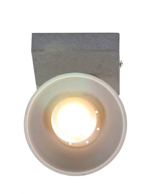 grijs-plafondlampje-industrieel_1