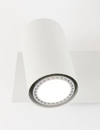 kantelbare-plafondspot-drielichts