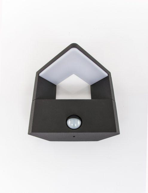 led-buitenlamp-zwart_1