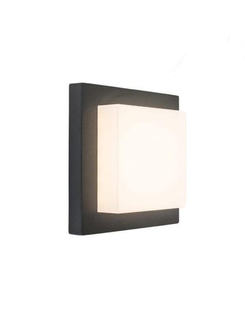 muur-plafond-lamp_1