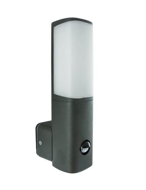 muurlamp-tuinlamp-sensor