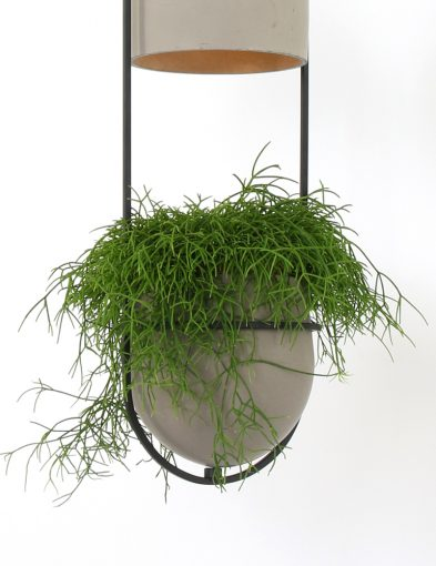 opvallende-hanglamp-grijs-plant
