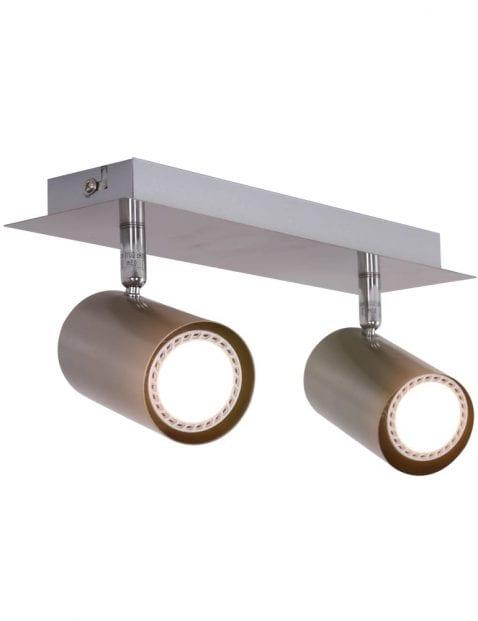 plafondlamp-tweespots