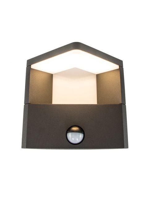 sensor-buitenlamp-wandlamp