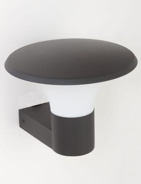 sfeervol-buitenlampje-zwart