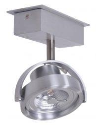 stoere-plafondspot-eenlichts-staal_1