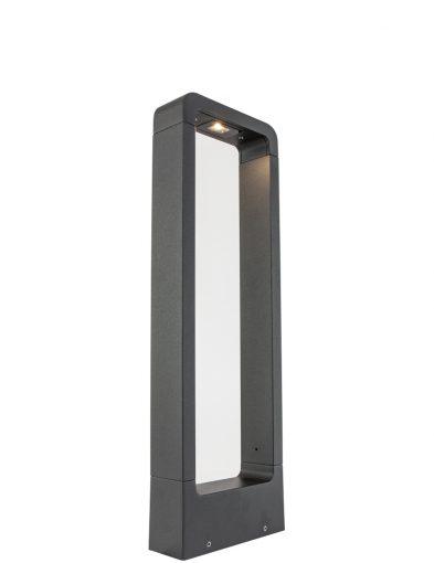 tuinlamp-led-module