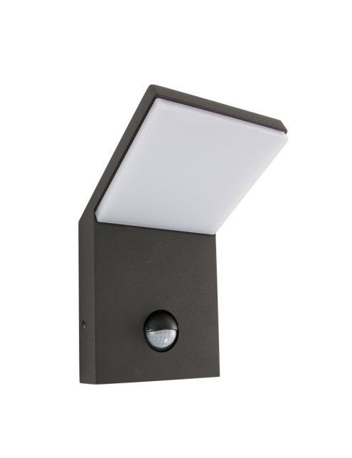 tuinlamp-muurlamp-sensor