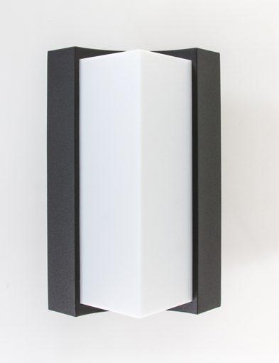 vooraanzicht-zwart-buitenlampje