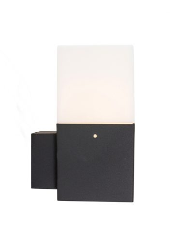 wandlampje-buiten-zwart_1