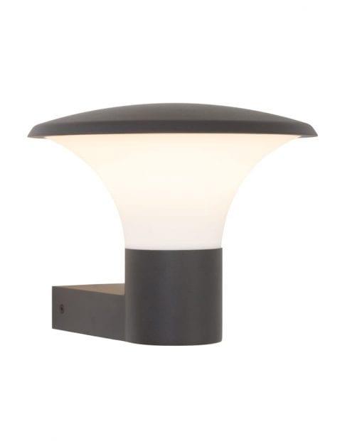 wandlampje-buiten-zwart_1_1