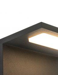zwart-lampje