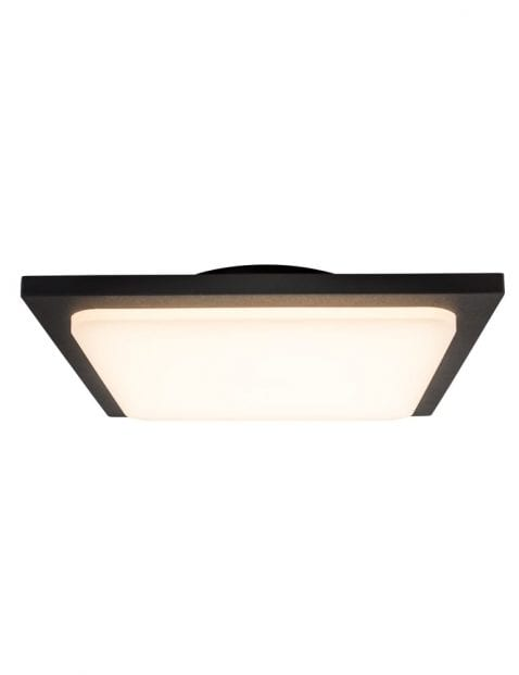 zwart-plafondlampje