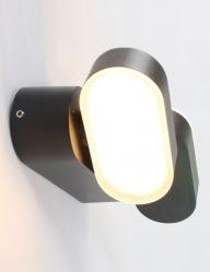 zwarte_2_lichts_buitenlamp