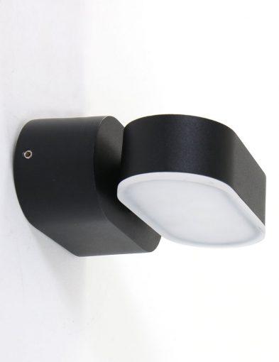 zwarte_wandlamp_voor_buiten