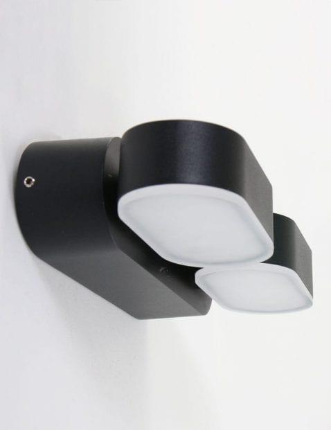 zwarte_wandlamp_voor_buiten_met_2_lichtbronnen
