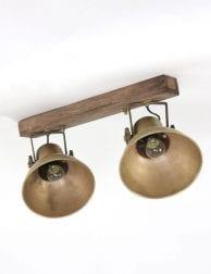 plafonlamp met 2 lichts spot