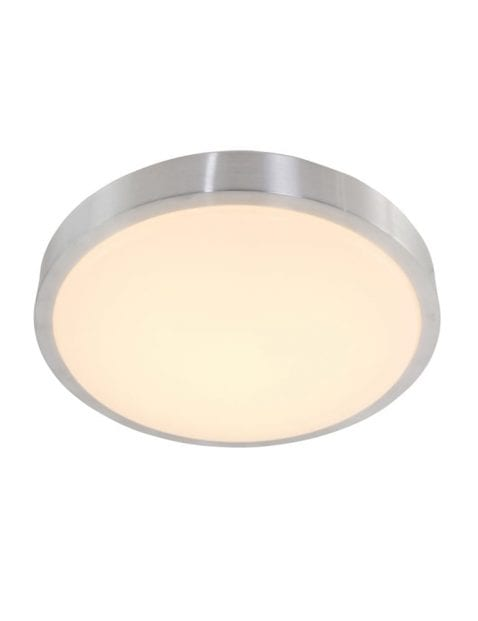 Staalkleurige plafondlamp