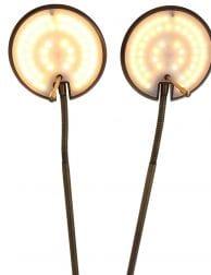 lamp met twee armen