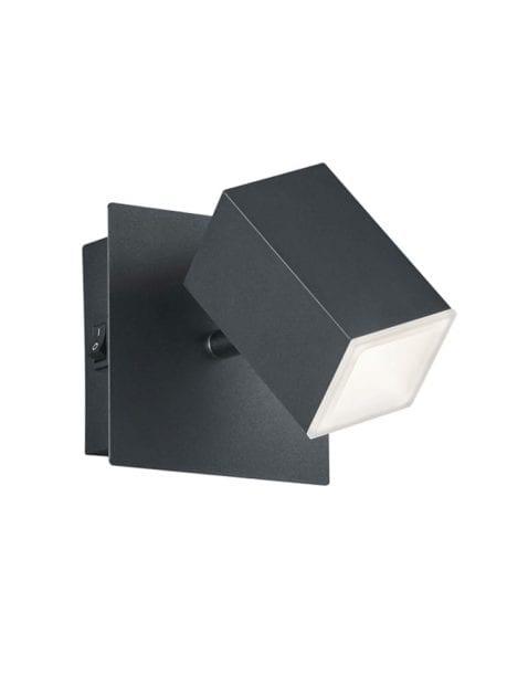 Zwarte kantelbare wandlamp