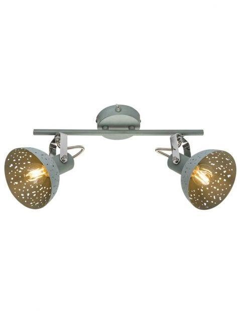 Indsutriele 2lichts plafondlamp-1724GR