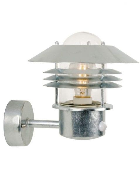 Stalen robuusten buitenwandlamp-2401ST
