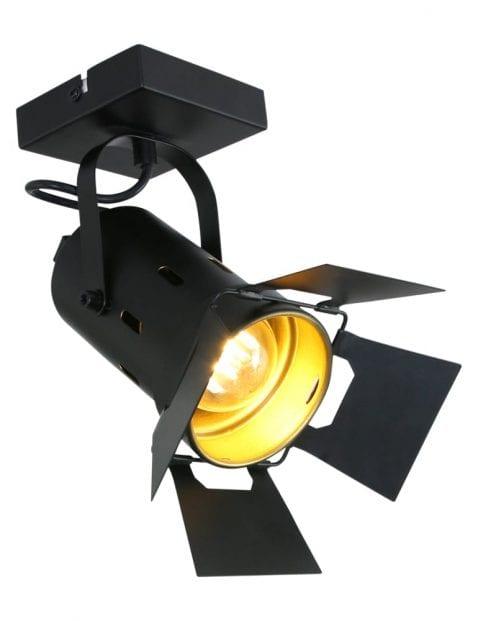 filmspot plafond-7996ZW