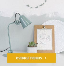 overige-trends