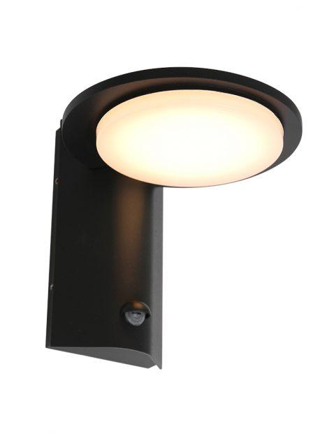 LED schotel buitenlamp met sensor Steinhauer Luzon zwart