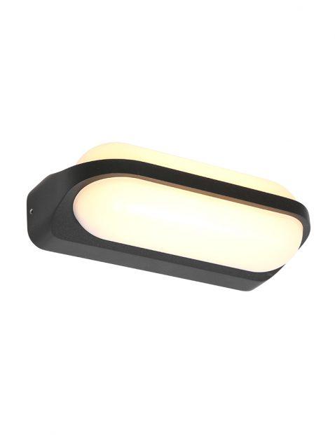 Langwerpige LED buitenlamp Steinhauer Siargao zwart