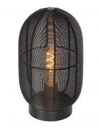 Draadlamp lantaarn-