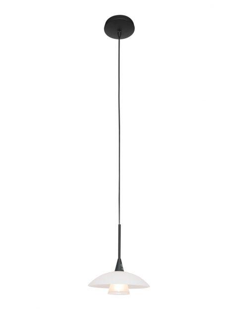 Hanglamp met glazen schotel-2655ZW