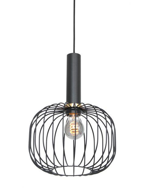 Trendy draadlamp met gouden details-3070ZW