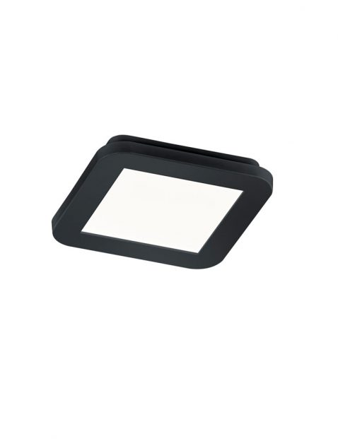 Vierkante dimbare LED plafondlamp-1887ZW