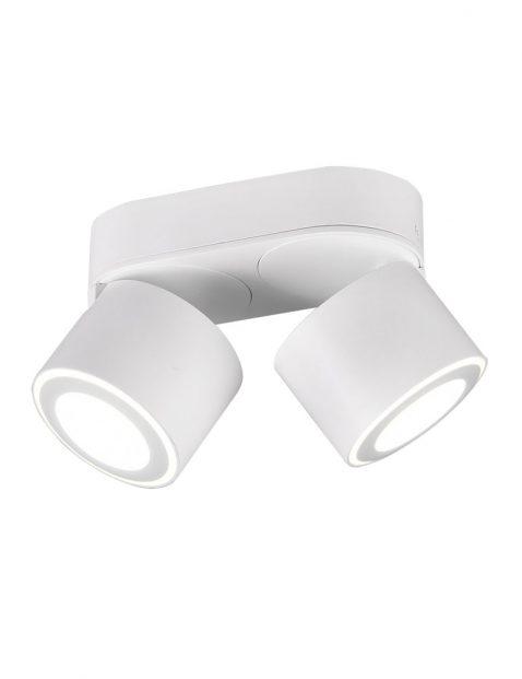 Tweelichts moderne LED plafondspot-3168W