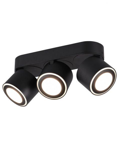 Driespot met twee ringen-3169ZW