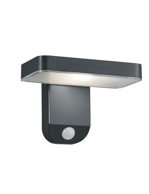 Buiten LED wandlamp met bewegingsmelder-3217A